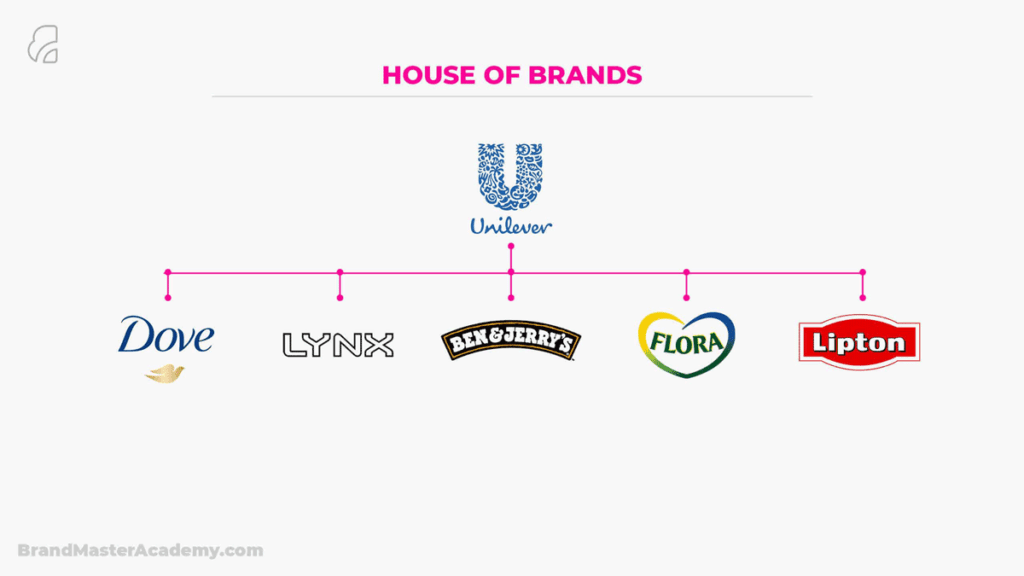 Brand Architecture House Of Brands