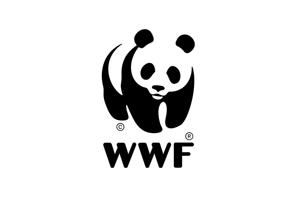 charity branding wwf logo design