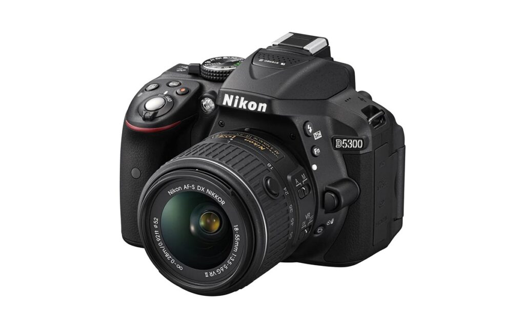 Which Digital Cameras To Buy For Beginners