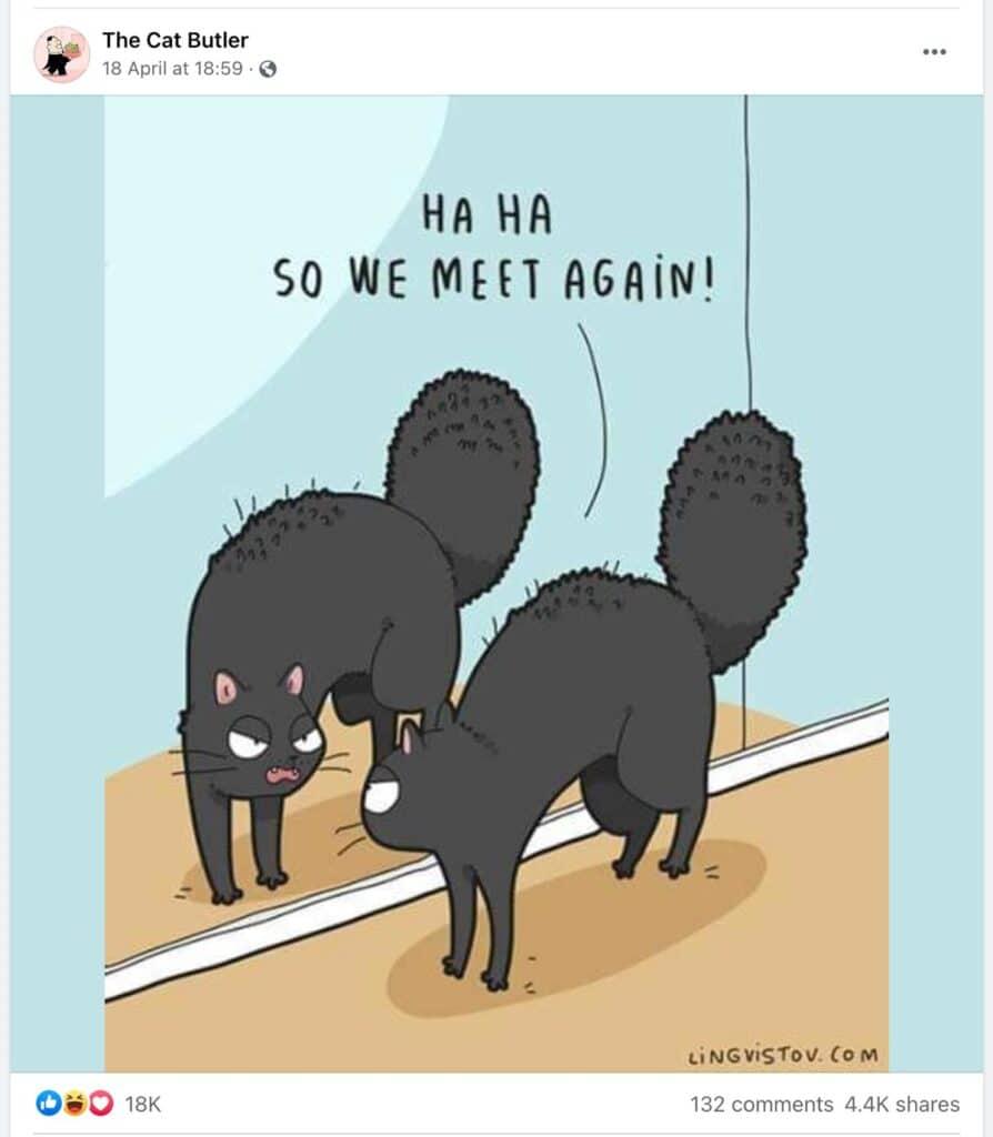 Cat Butler On Instagram Meme